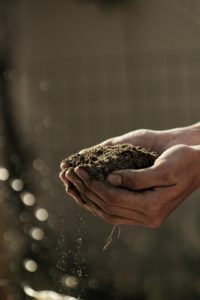 Dirty hands cupping brown soil.Tag: cognitive behavioral self-care strategies