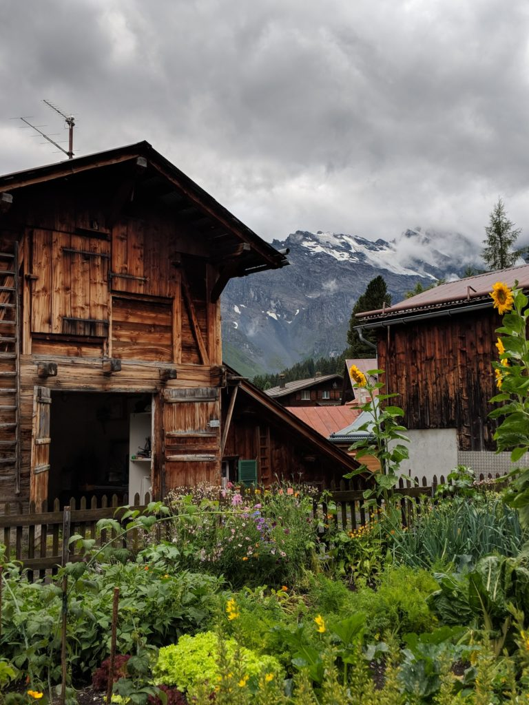 Garden, sunflowers, cabin, mountains, fog, Switzerland. Tag: cognitive behavioral self-care strategies
