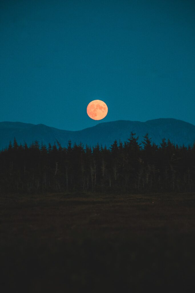 night sky landscape with dark field leading up to black tree line, dark blue mountain scape and light blue night sky with orange full moon going over mountains, tag: October 2021 Self-Care
